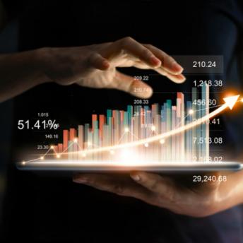 zoondia data analytics